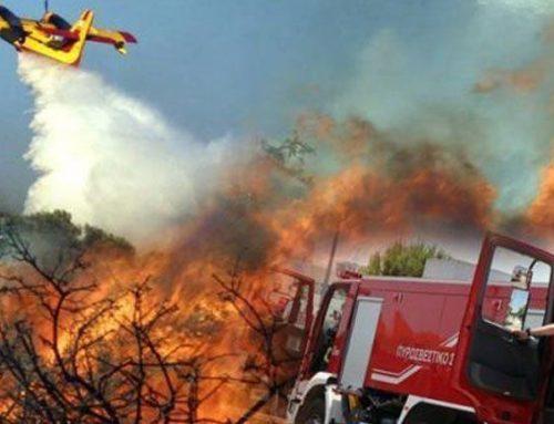Προσοχή κίνδυνος πυρκαγιάς στα δάση της Κορινθίας