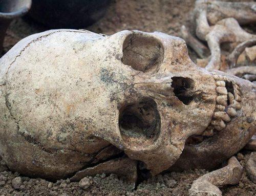 Κρανίο 210.000 ετών από την Ελλάδα το αρχαιότερο δείγμα Homo sapiens σε όλη την Ευρασία