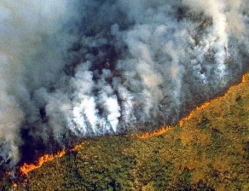 Ευχάριστα νέα! Tέθηκε υπό έλεγχο η φωτιά στην Περαχώρα. (video)
