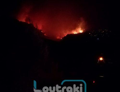 ΤΩΡΑ: Δεν τα παρατούν στρατός και πυροσβεστική στα Γεράνεια (video)