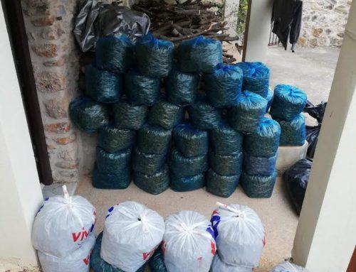 Πελοπόννησος:Εξαρθρώθηκε εγκληματική οργάνωση διακίνησης ναρκωτικών (εικόνες)