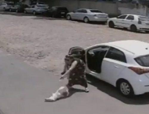 ΣΥΓΚΛΟΝΙΣΤΙΚΟ ΒΙΝΤΕΟ: Γυναίκα εγκαταλείπει τον κουτσό σκύλο της στο δρόμο