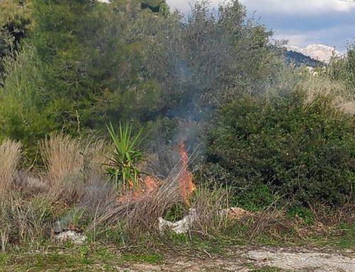 Μικρής έκτασης πυρκαγιά στους Αγίους Θεοδώρους (ΒΙΝΤΕΟ)