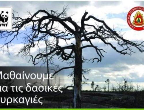 Λουτράκι:«Μαθαίνουμε για τις δασικές πυρκαγιές» – Εκδήλωση από το WWF Ελλάς και το Σύλλογο Πυροπροστασίας Δασών