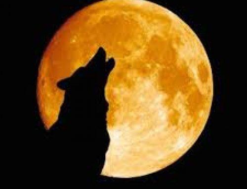 Απόψε η «πανσέληνος του λύκου» – Ορατή από την Ελλάδα