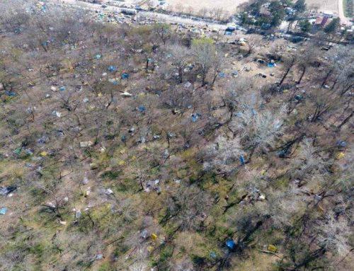 Εβρος: Αποψιλώνεται το δάσος των Καστανιών από τη συρροή μεταναστών