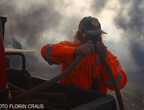 Κορινθία: Απαγορεύεται η κυκλοφορία των οχημάτων λόγω κινδύνου φωτιάς στα δάση