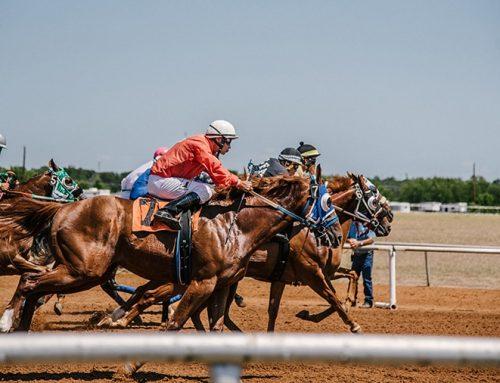 Επανεκκίνηση των ιπποδρομιών στο Μαρκόπουλο