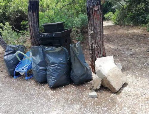 Εθελοντές καθάρισαν το δάσος Πευκιά στο Ξυλόκαστρο