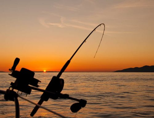 Συνάντηση ΝΗΡΕΑ – Αντιπεριφερειάρχη με θέμα την αλιεία