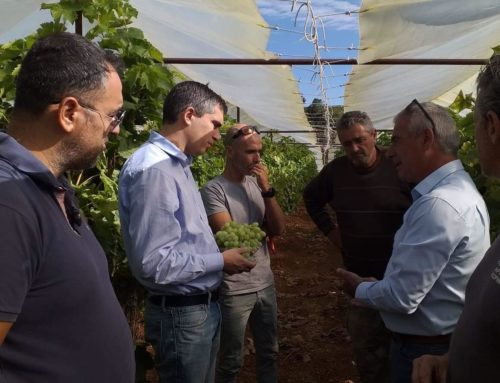 Επίσκεψη Χρίστου Δήμα στην Κορινθία και συζήτηση με τους παραγωγούς, οινοποιούς και εμπόρους που χτυπήθηκαν από τον Ιανό.