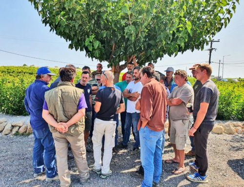 Άμεσες αποζημιώσεις από τον ΕΛΓΑ ζητά ο δήμος Σικυωνίων για τους αγρότες που επλήγησαν από την κακοκαιρία