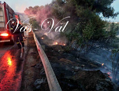 Τέσσερα στρέμματα κάηκαν κοντά στο στρατόπεδο στην Κόρινθο (φωτο)