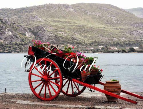 28η Οκτωβρίου: Βροχερό απόγευμα στη Λίμνη Βουλιαγμένης και τον Όσιο Πατάπιο (φωτο)