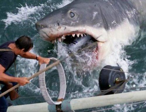 Ο καρχαρίας από τα «Σαγόνια του Καρχαρία» στο μουσείο των Οσκαρ (φωτο)