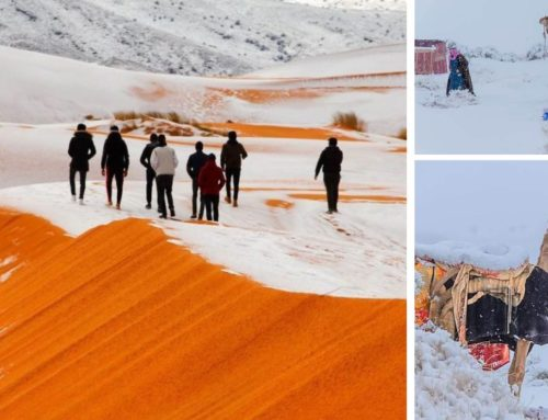 Χιόνισε και στη Σαχάρα – Στους -2 βαθμούς η θερμοκρασία στη Σαουδική Αραβία