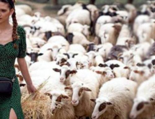 """Η αγρότισσα της Κορινθίας μετά το GNTM στη """"Φάρμα"""""""