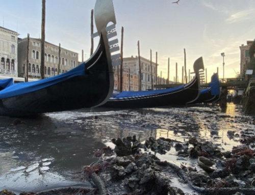 Στέρεψαν τα κανάλια της Βενετίας – Γόνδολες άραξαν λόγω άμπωτης στο βυθό (video)
