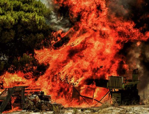 Πελοπόννησος : Πυρκαγιά σε δασική έκταση στη Μεσσηνία
