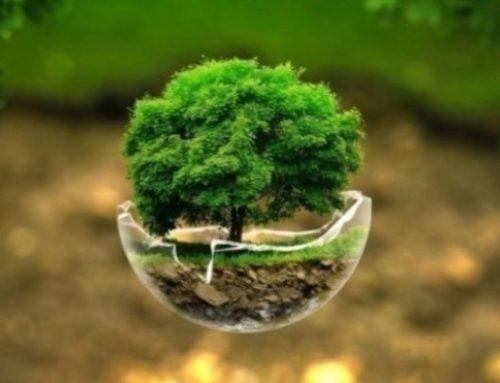 Παγκόσμια Ημέρα της Γης: Σήμερα γιορτάζει ο πλανήτης μας