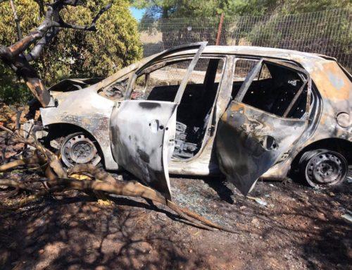Αργολίδα: Οδηγός κόντεψε να σκοτωθεί στην προσπάθειά του να αποφύγει σκύλο